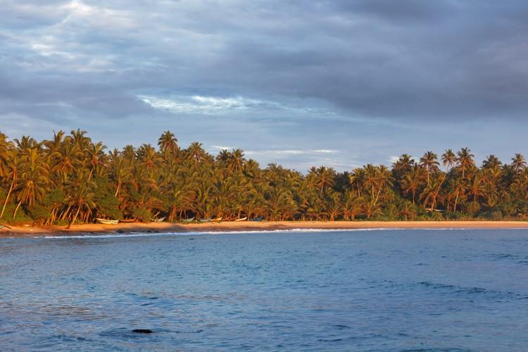 Mirissa strand - reis Sri Lanka